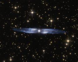 宇宙を飛ぶ鳥? 幻想的な青い翼をハッブルが捉える