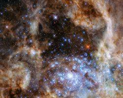 「太陽の100倍以上大きい星々」がダイヤモンドのように煌めく様子