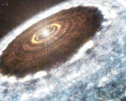 星の周囲の「水の雪線」初観測 太陽系も昔はこうだった?