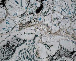 北極の氷、史上最少に 過去最高の気温原因か:NASA報告