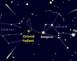 今日はオリオン座流星群を見よう! 21日夜〜22日夜明け前が最適 ライブ実況も登場