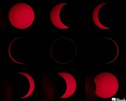 昨日の「金環日食」、南半球ではこんなにキレイに見られました