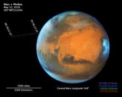 火星を周回する衛星「フォボス」 ハッブルがタイムラプスで撮影