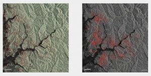 北海道胆振東部地震、「だいち2号」が観測