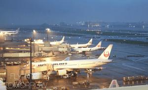 関西国際空港のJALグループ便、21日より全便運航再開へ