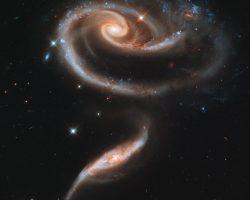 宇宙に咲いた「バラ」は数十億年かけて散っていく