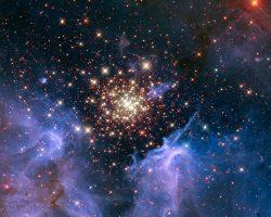 夜空に咲く花火の様な星形成の場所