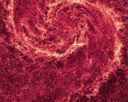 「M51」の渦巻く塵構造