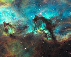 大マゼラン雲に浮かぶ「タツノオトシゴ」