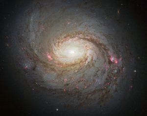 超大質量ブラックホールが生み出す銀河の光