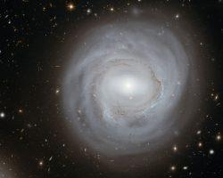 蒼白。星形成の材料が欠乏している貧血銀河