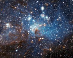 調和した領域に共存する大小の星々
