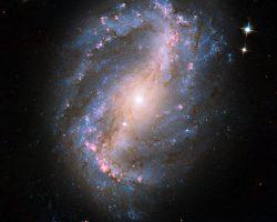 爆発的な星形成活動。一方で銀河中心の燃料は枯渇していた