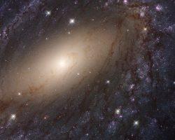彼方の銀河に見る「天の川銀河」の姿