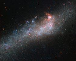 相互作用銀河の崩れ行く一瞬を捉えた形状の愛称