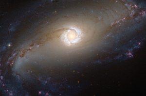超大質量ブラックホールが創り出す銀河のリング