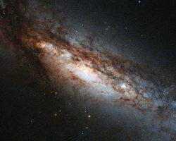 独自の環と大規模爆発が確認された「極リング銀河」