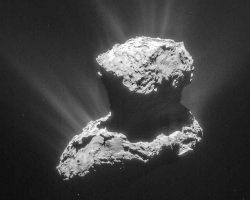 彗星の匂いを再現すると「猫の…」