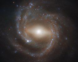 「NGC 7773」に見る模範的な棒渦巻銀河の姿