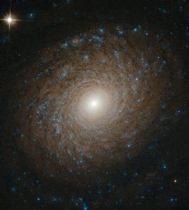 青を撒き散らす繊細で美しい渦:NGC 2985
