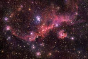 赤い翼を広げて宙を舞う星雲:IC 2177