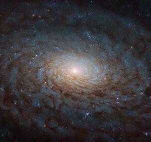 別次元の入り口のよう。NGC 4280の壮大な渦