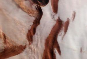 氷と砂塵のコントラスト。ESAの探査機が撮影した火星の北極域