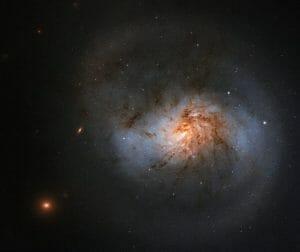 ハッブルが捉えた6600万光年先の棒渦巻銀河「NGC 1022」