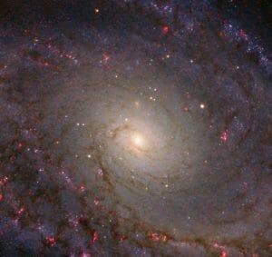 歪んだグランドデザイン渦巻銀河「NGC 5364」