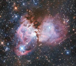 大質量星誕生の実験室。大マゼラン雲に輝く「星のゆりかご」