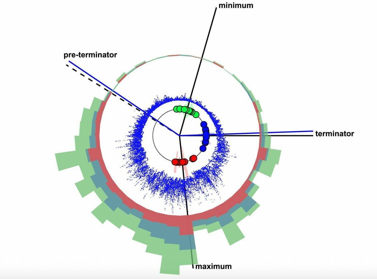 Chapman氏らが作成した「太陽周期時計(solar cycle clock)」