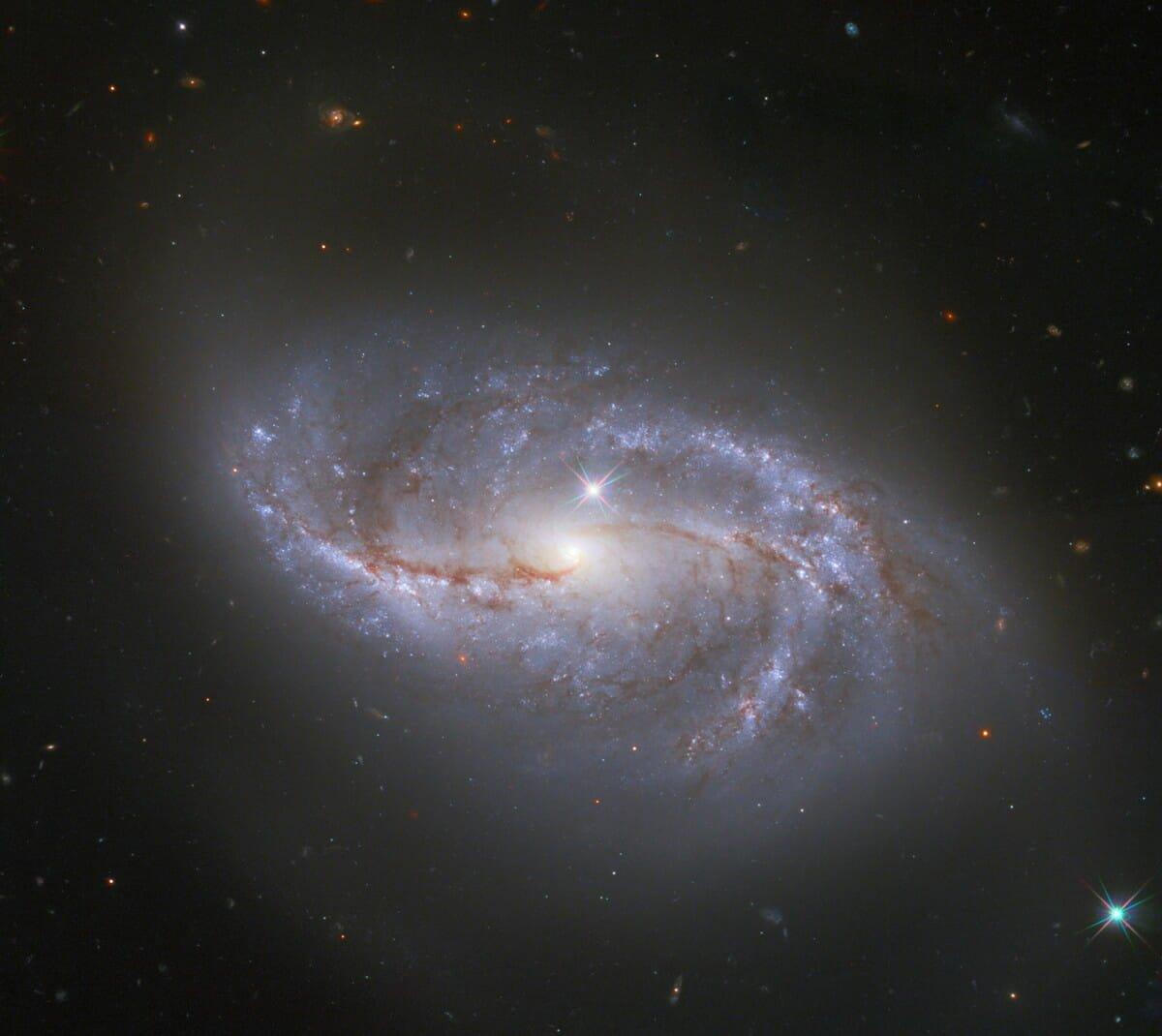 棒渦巻銀河「NGC 2608」