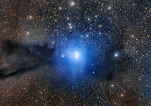 輝き始めたばかりの幼き星々。暗黒星雲が漂う星形成領域