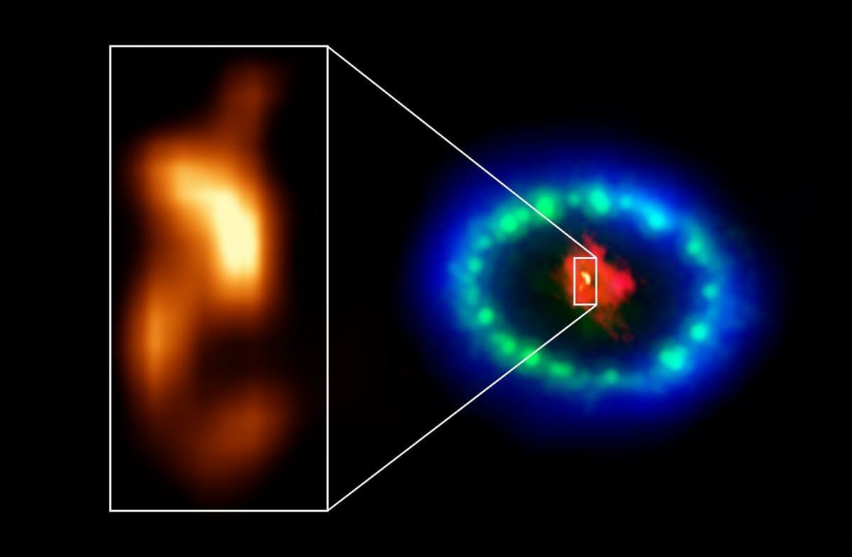 アルマ望遠鏡による塵の分布の観測結果