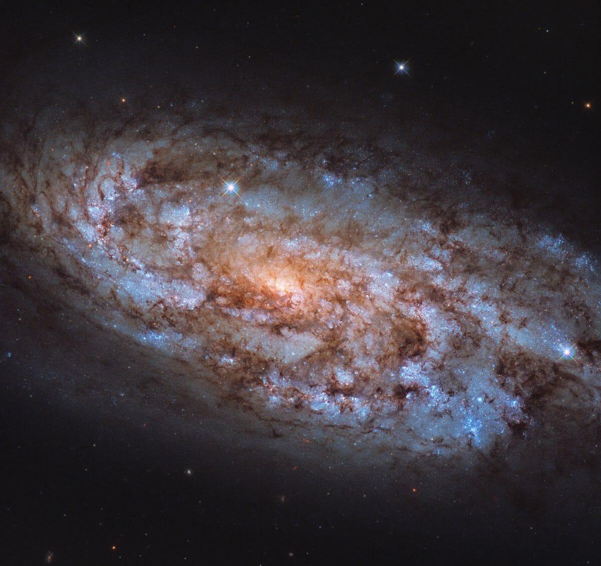 渦巻銀河「NGC 1792」(Credit: ESA/Hubble & NASA, J. Lee)