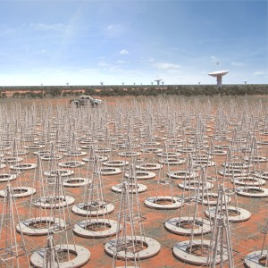 antennas_at_SKAオーストラリアに建設予定の低周波帯アンテナの想像図(Credit: SKA Japan)-Low_in_Australia