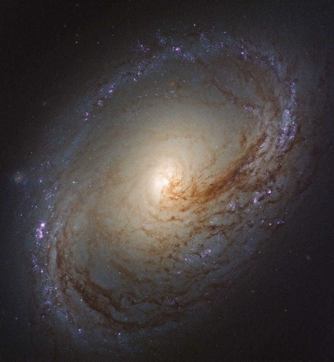 渦巻銀河「M96」(Credit: NASA, ESA, and the LEGUS team)