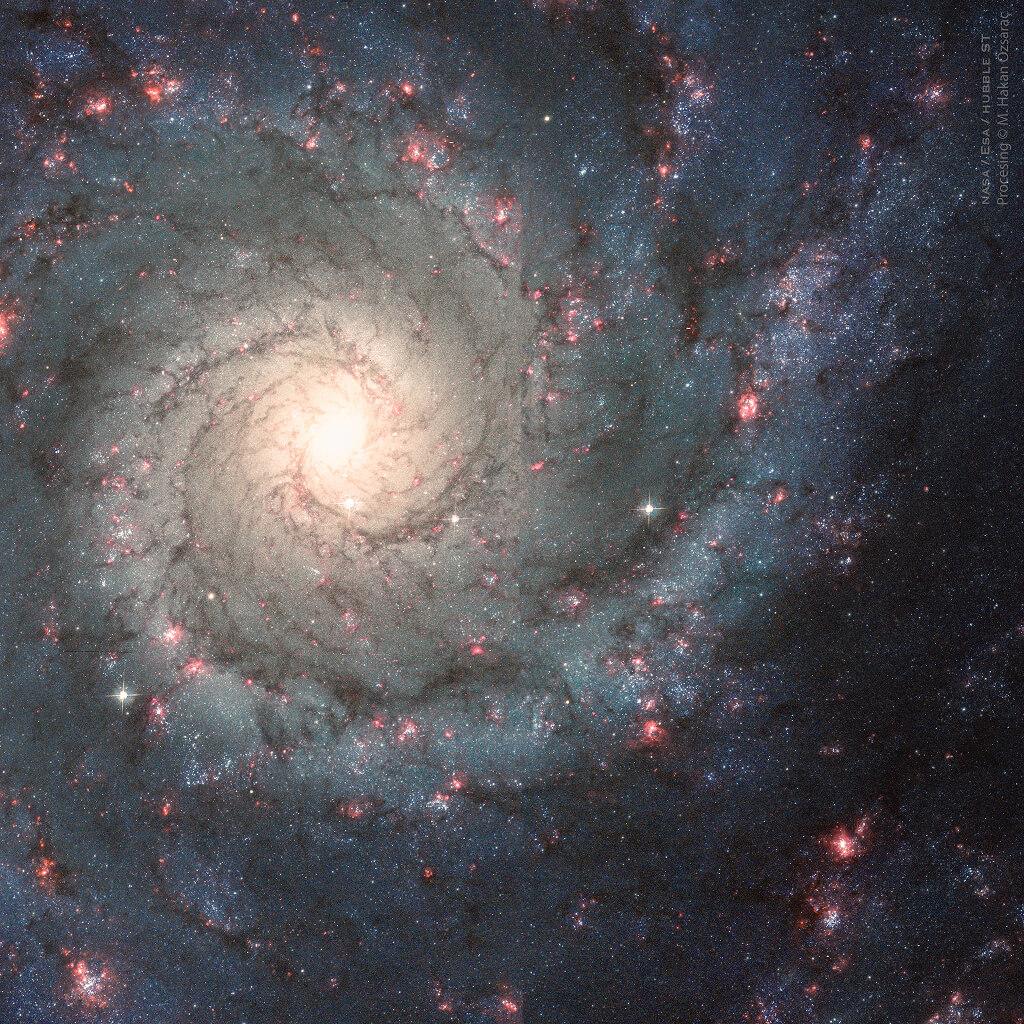 渦巻銀河「M74」(Credit: NASA, ESA, Hubble, HLA; Processing: Mehmet Hakan Ozsarac)