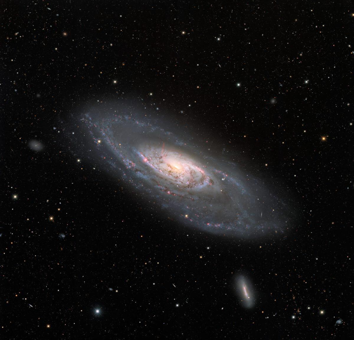 渦巻銀河「M106」(Credit: KPNO/NOIRLab/NSF/AURA, Acknowledgment: PI: M.T. Patterson (New Mexico State University), Image processing: T.A. Rector (University of Alaska Anchorage), M. Zamani & D. de Martin)